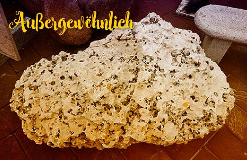 Außergewöhnlicher Stein, Naturstein aus dem Meer, wahrscheinlich Korallenriff